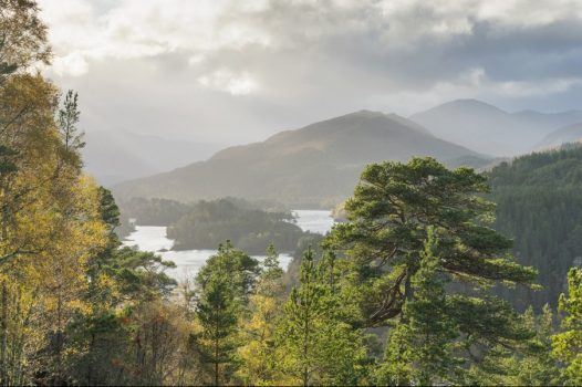 Loch Beinn, Glen Affric, Inverness and Loch Ness, Scotland - Looking over Loch Beinn a Mheadhain on the Viewpoint Walk at Dog Falls, Glen Affric © VisitScotland, Kenny Lam