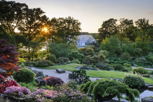 View from the Rock Garden towards the Glasshouse in Spring at RHS Garden Wisley ©RHS